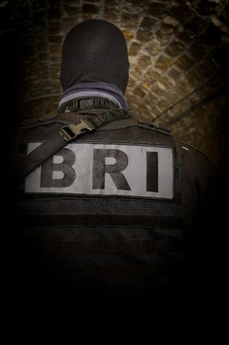 EB-FRA-BRI- 2078
